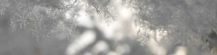 header_winter_ice_crystal